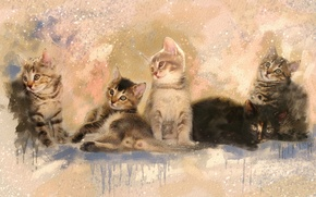Picture picture, divorce, watercolor, kittens, painting, grey, cuties, strokes, look, Wallpaper from lolita777