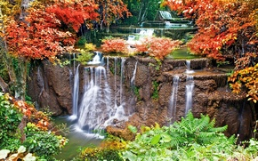 Picture trees, rivers, waterfalls, gardens, streams