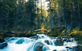 Picture forest, girl, river, Lizzy Gadd, Where Thoughts Flow Freely
