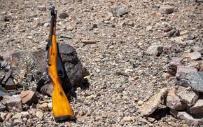 Picture stones, rifle, Mosin, store, M44