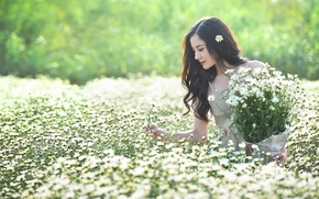 Picture field, summer, girl, flowers, Asian