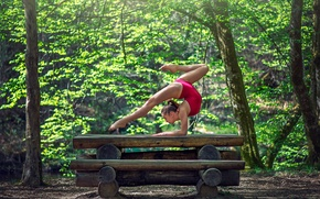 Picture grace, log, gymnast, exercise, Marie-Lou Lagrange