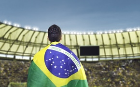 Picture logo, football, flag, World Cup, Brasil, FIFA