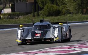 Picture audi, The mans, R18 TDI, The le Mans prototype