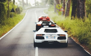 Picture Lamborghini, Orange, Black, White, LP700-4, Aventador, Supercars, Back, Road, Rear