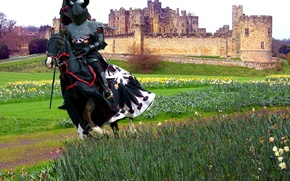 Picture field, castle, armor, knight, spear, armor, horse, grass. flowers, pennant, the blanket