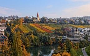 Picture landscape, river, home, Switzerland, slope, vineyard, Zurich