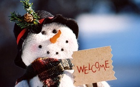 Picture new year, Christmas, snowman, christmas, new year, welcome, holidays