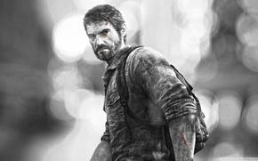 Picture beard, The Last of Us, Joel