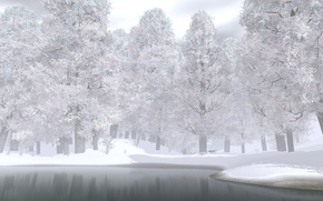 Picture winter, forest, snow, trees, lake, wolves