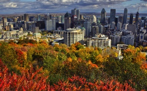 Picture autumn, clouds, landscape, home, Canada, Montreal, Sunny, the bushes, Montreal, hill