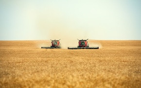 Wallpaper workers, working, combines, a few harvesters, swath, cutting, a pair of combines, Harvesters, roll, cutting