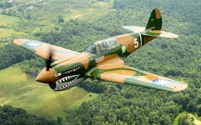 Picture the plane, Curtiss, P-40N Warhawk, over Geneseo
