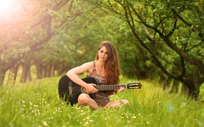 Picture music, guitar, Fanny