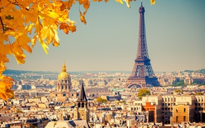 Picture autumn, leaves, the city, background, France, Paris, view, building, home, yellow, roof, panorama, Eiffel tower, …