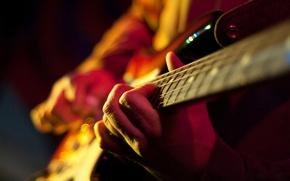 Picture macro, guitar, strings, hands, chord