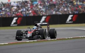 Picture McLaren, Honda, Alonso