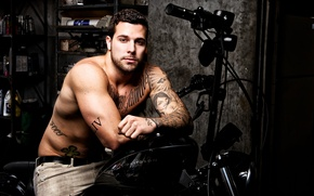 Picture man, motorcycle, Male, tattoo, Harley Davidson, Harley