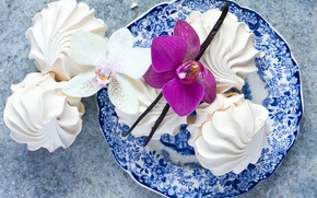 Picture white, flower, pink, food, plate, sweets, dessert, Orchid, vanilla, marshmallows