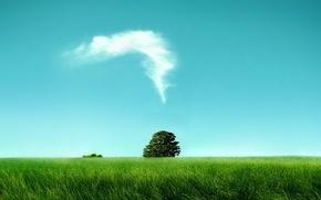 Wallpaper tree, Field, clouds