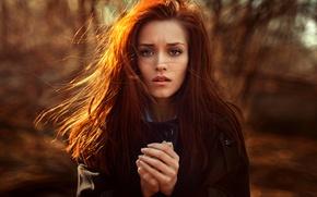 Picture hair, portrait, sunlight, George Chernyadev, Sunny Kate