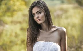 Picture dress, brunette, shoulders, fedra, amabielle, melinda, rene star, zeta, sunshine a