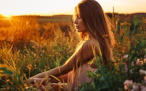 Picture field, grass, girl, sunset, model, portrait, light, summer, brown hair, nature, flowers, beautiful, beauty, inspiration, …
