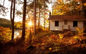 Picture autumn, forest, the sun, trees, landscape, sunset, Villa, home, Nature, house, forest, Nature, architecture, trees, …