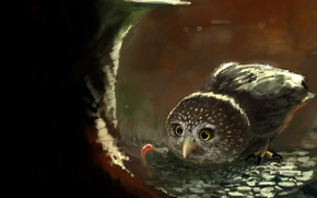 Wallpaper art, owl, stump, worm, food, bird, the worm, forest