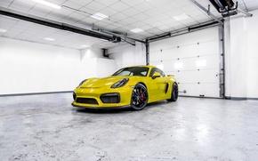 Picture Porsche, white, cayman, room, GT4