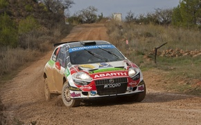 Picture Road, Machine, Lights, Rally, The front, Abarth, Grande Punto