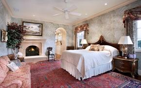 Picture design, photo, sofa, tree, carpet, bed, interior, bedroom