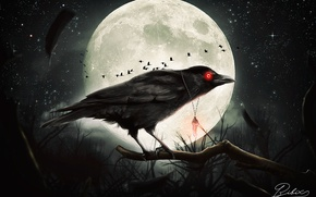 Picture night, Gothic, the moon, Raven, by destroyer971