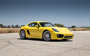 Picture Porsche, Cayman, yellow