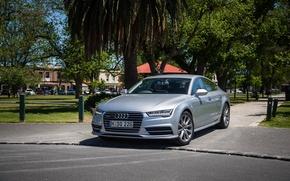 Picture trees, Audi, Audi, TDI, car, quattro, the front, S line, Sportback 3.0
