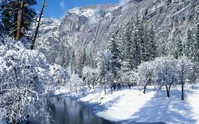 Wallpaper CA, Yosemite national Park, snow, winter