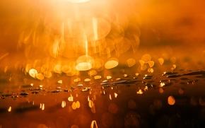 Picture water, macro, light, glare, Drops