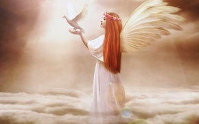 Picture the sky, girl, clouds, face, fiction, bird, hair, dove, wings, angel, hands, profile, long, Jennifer …