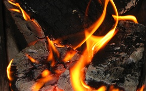 Picture fire, the fire, wood