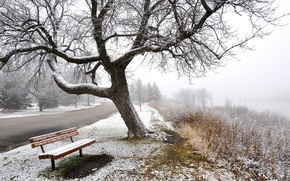 Picture winter, road, snow, trees, fog, bench