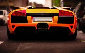 Picture road, street, Roadster, Lamborghini, miracle, orange, Murcielago, LP640