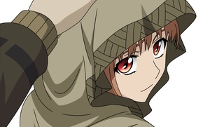 Picture anime, art, hood, wolf, Horo, spice and wolf, horo