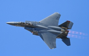 Picture flight, fighter, Eagle, F-15, tactical