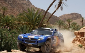 Picture palm trees, rocks, Volkswagen, Touareg Race