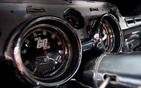 Wallpaper Shelby, GT500, Mustang, Ford