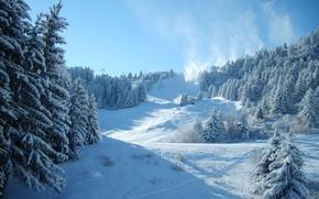 Wallpaper ate, snow, winter