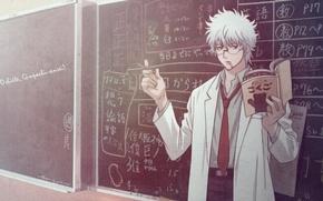 Picture teacher, Gintoki, Gintama