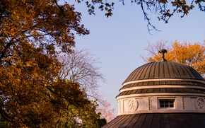Picture Sky, Blue, Park, Stuttgart, Forest, Trees, Teehouse, Dome
