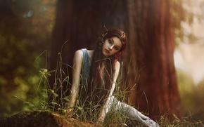 Picture forest, girl, fantasy, art, Elf, Agnieszka Lorek