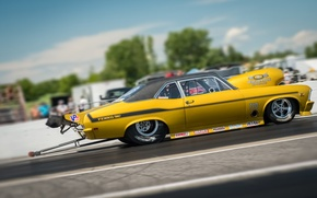 Picture race, Chevrolet, Camaro, muscle car, Muscle car, Yenko, drag racing